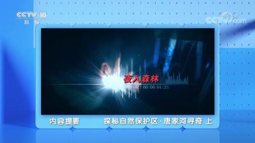 《地理·中国》 20200226 探秘自然保护区·唐家河寻奇 上