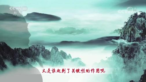 《百家讲坛》 20200227 诗歌故人心(第二部)28 红萼无言耿相忆