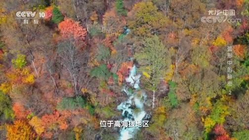 《地理·中国》 20200310 弧形中的秘密 2