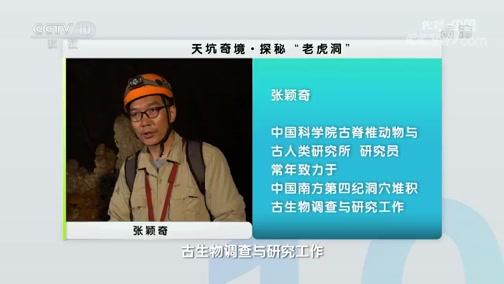 """《地理·中国》 20200321 天坑奇境·探秘""""老虎洞"""""""