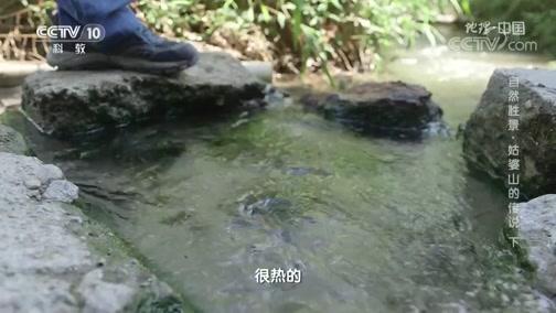 《地理·中国》 20200330 自然胜景·姑婆山的传说 下