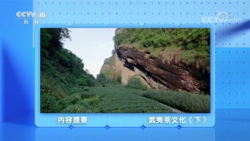 《跟着书本去旅行》 20200707 武夷茶韵——武夷茶文化(下)