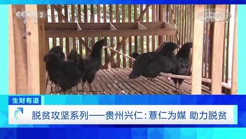《生财有道》 20200714 脱贫攻坚系列 贵州兴仁:薏仁为媒 助力脱贫