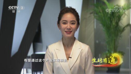 《生财有道》 20200728 脱贫攻坚系列——广西三江:帮扶用心 脱贫给力