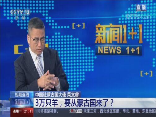 《新闻1+1》 20200817 3万只羊,要从蒙古国来了?