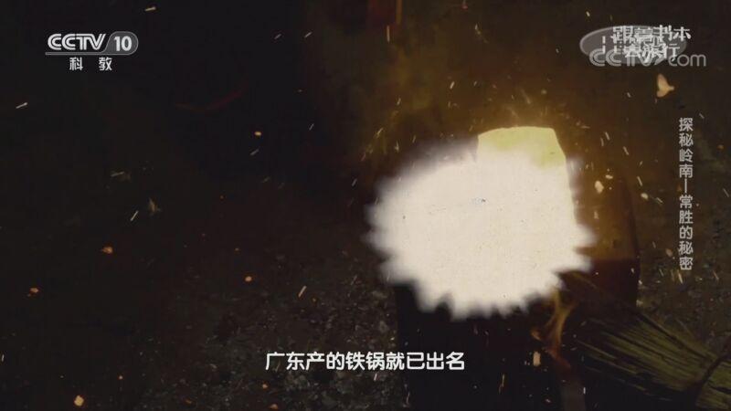 《跟着书本去旅行》 20200827 探秘岭南——常胜的秘密