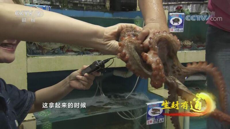 《生财有道》 20200827 生态中国沿海行——海鲜 海趣 嗨三亚
