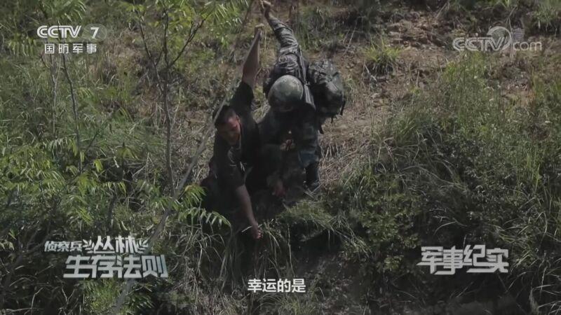 《军事纪实》 20200911 侦察兵丛林生存法则