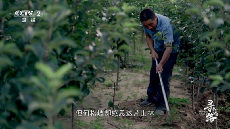 《经济半小时》 20210223 特别报道:寻路乡村中国·佳境