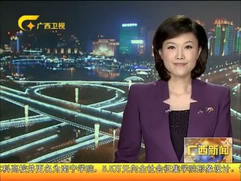 《广西新闻》20130131