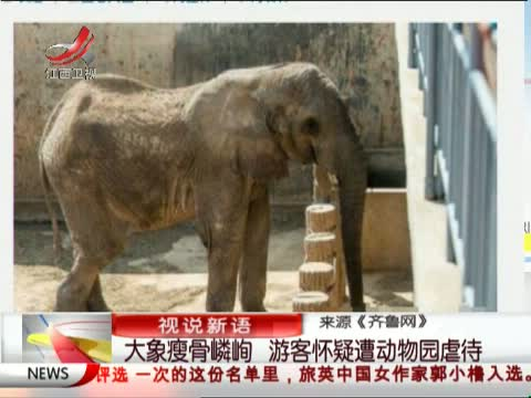 游客动物园内扔石头 大象跟人学砸伤人