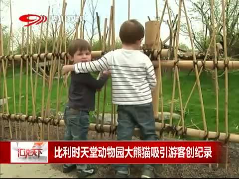 [汇说天下]比利时天堂动物园大熊猫吸引游客创纪录