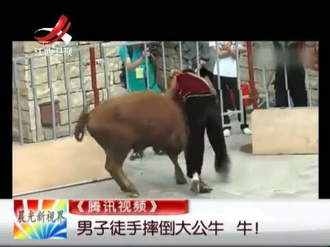 《腾讯视频》 男子徒手摔倒大公牛 牛!
