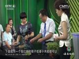 中华医药健康故事 视频集 - 农业天地 - 农业天地的博客