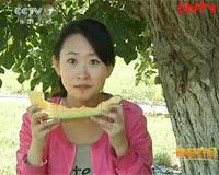 探秘康熙爱吃的哈密瓜