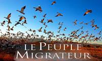 <font color=0629fd>《迁徙的鸟》(2002年) 讲述鸟儿飞行的梦想</font>