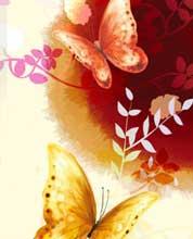 <b>中国传统节日大搜索</b><br>民族文化千年传承<br><font color=red>进入专题>></font>