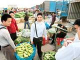 第84期 如何治愈农产品物流顽疾?