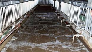 多数城市为单水源供水 污染高发频现危机