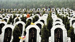 墓地价格连年攀升 万元以下墓地已很少见