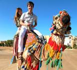 Grubby夫妇埃及旅游图赏