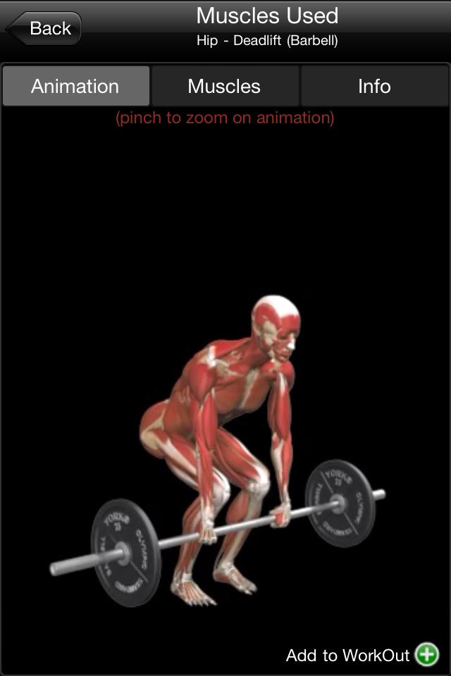 国外肌肉锻炼视频_曹格老婆健身房锻炼肌肉明显身材性感图