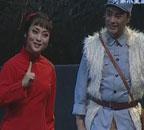 豫剧《铡刀下的红梅》