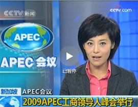 <center>2009APEC工商领导人峰会举行</center>