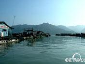祥和的海上渔村