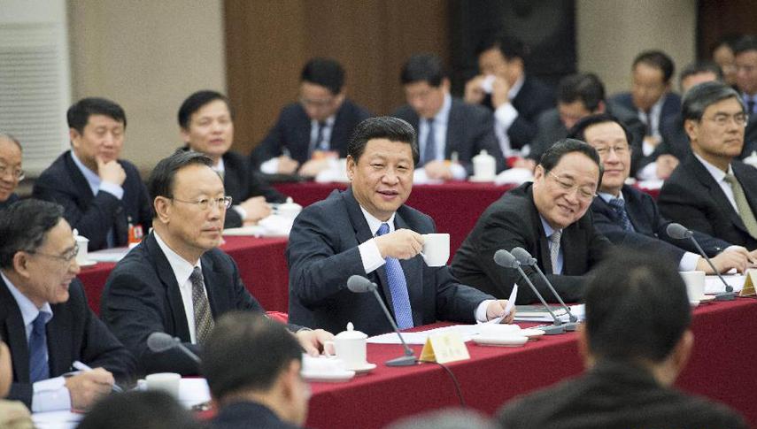习近平等看望出席全国政协十二届一次会议委员并参加讨论