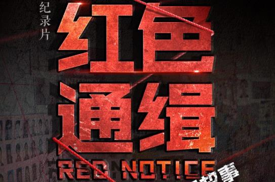 红色通缉·第二集 织网 00:55:03