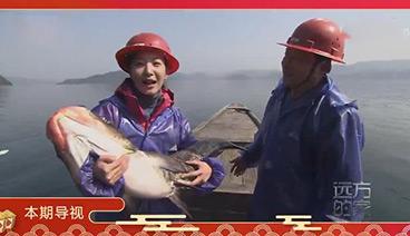《远方的家》 20200128 美食过大年 年年有鱼喜庆味