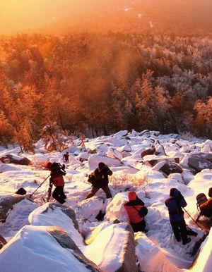 冬游森林氧黑龙江吧伊春 银装素裹的童话世界