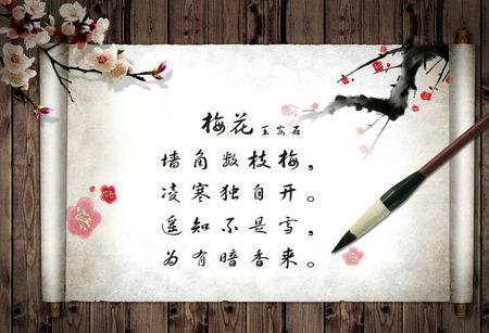 【关于梅花的诗】