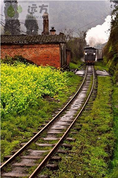 """春天里的小火车(作者:雨萌) 嘉阳小火车 . 蜜蜂岩车站 这里由于弯度大坡度陡,就利用詹天佑发明的""""人""""字形掉头方式,让火车通过机车掉头的方式实现转弯的目的。由于火车要向反的方向开,常有乘客会误以为火车又开回去了,其实火车是沿着另一条轨道继续向芭沟方向前进吧了。"""