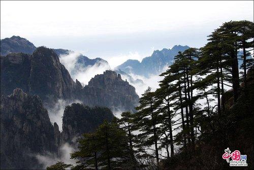春天黄山别样风景 雾凇云海演绎美丽