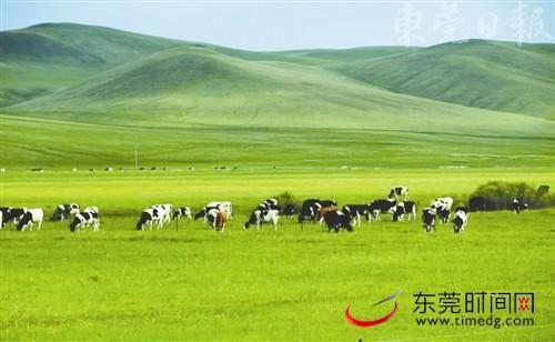 肥沃的草原