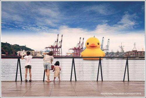"""""""大黄鸭""""确定12月进入台湾基隆港"""