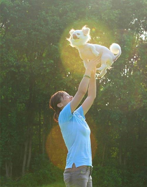 人与动物和谐相处 共筑和谐之梦