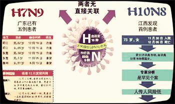 H10N8与此前发现的H5N1等都为亚型禽流感病毒,目前来看,其与H7N9不存在直接关系。