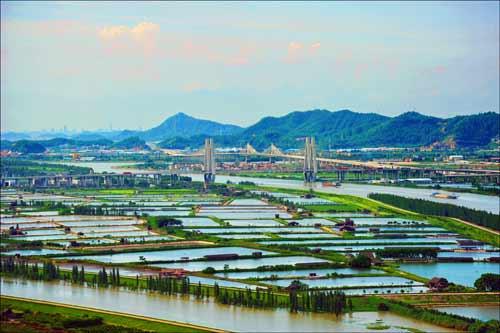广珠西线高速