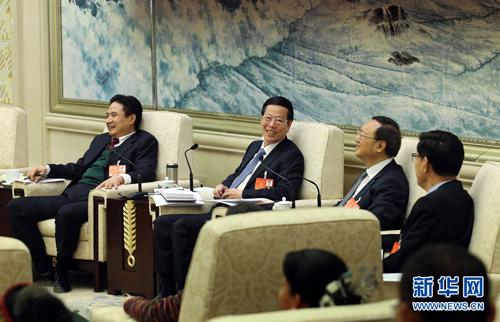 شارك تشانغ قاو لي وفد مقاطعة هاينان في المراجعة