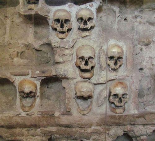 令人发指的建筑材料 领略毛骨悚然的骨骼建筑