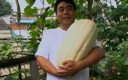 《舌尖上的中国》第一季 第七集《我们的田野》