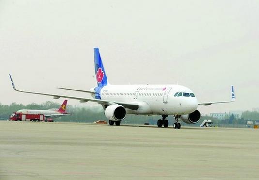 截至2013年底,民航业现有运输航空公司46家。其中国有控股公司36 家,民营和民营控股公司10家;全货运航空公司7家;中外合资航空公司13家;上市航空公司5家。除了长龙航空、东海航空、青岛航空已投入运营,瑞丽航空、九元航空等多家民营或民营资本控股的航空公司正在筹建。   关于青岛航空   青岛航空由南山集团、青岛交通发展集团有限公司和山东航空股份有限公司共同出资组建,其中南山集团占55%股份,作为控股股东。去年5月,民航局开始批复新建航空公司的筹建请求,这是自2007年暂停审批新设航空公司申请以来
