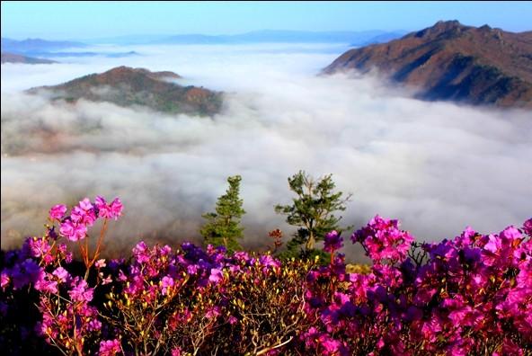 【黑龙江伊春】南岔仙翁山 北国有仙山 春意雾中看