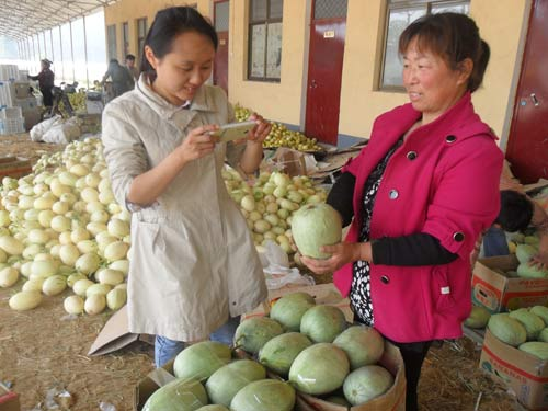 大学生村官正在帮助村民给甜瓜 拍照上传微博发布销售信息