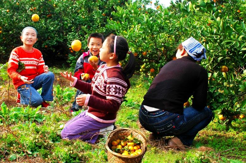 """Архив: В пригородных районах Шанхая наметился """"бум"""" семейных ферм"""
