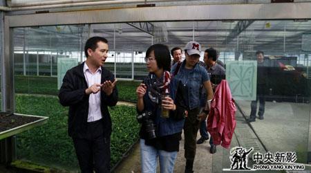 剧组在茶叶种植示范园调研