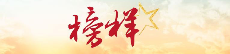 """为实现中国梦添砖加瓦——全国""""两优一先""""代表在京活动侧记"""
